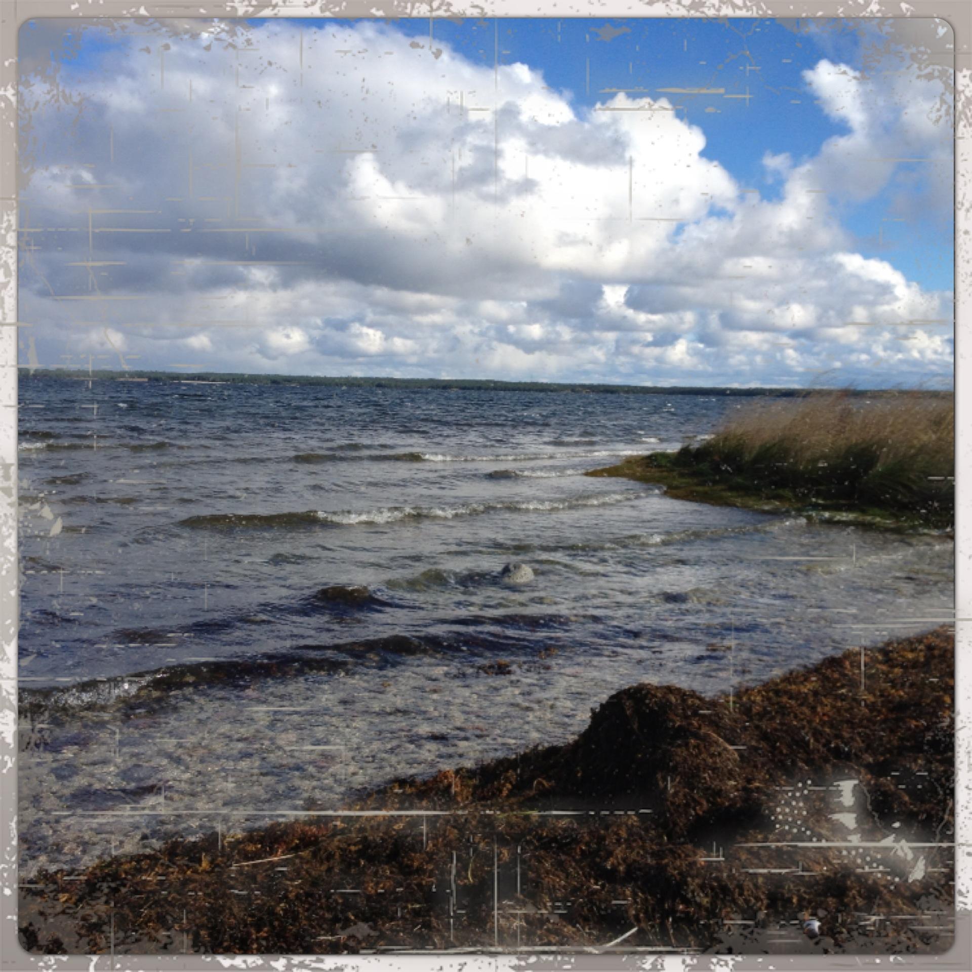 Gotland 130928 007
